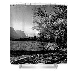 Shoreline Black And White Shower Curtain