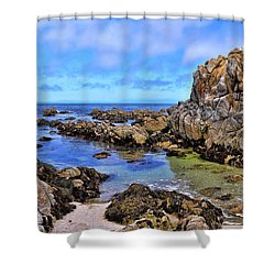 Shores Of Pacific Grove  Shower Curtain by Gina Savage