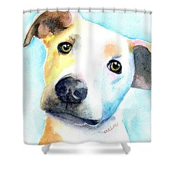Short Hair White And Brown Dog Shower Curtain
