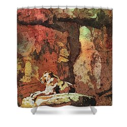 Shower Curtain featuring the painting Short Reprieve by Ryan Fox
