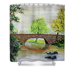 Shortcut Bridge Shower Curtain