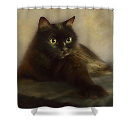 Shorty Shower Curtain