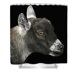 Show Goat Shower Curtain