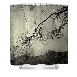 Show Me  Shower Curtain