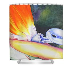 Show Off Shower Curtain
