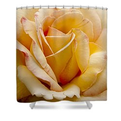 Show Stopper Shower Curtain