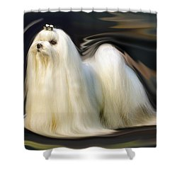 Show Stopper Shower Curtain by Graham Hawcroft pixsellpix