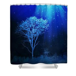 Shower Of Stars Shower Curtain