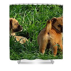 Shower Curtain featuring the digital art Showing Her Mutt. by Shelli Fitzpatrick