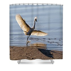 Showy Snowy Shower Curtain