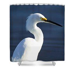 Showy Snowy Egret Shower Curtain by Rich Franco