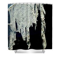 Shredded Curtains Shower Curtain