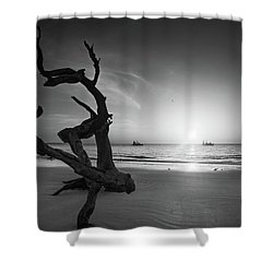 Shrimp Boats And Driftwood In Black And White Shower Curtain