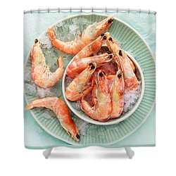 Shrimp On A Plate Shower Curtain by Anfisa Kameneva