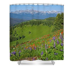 Shrine Ridge Morning Shower Curtain by Aaron Spong