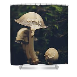 Shroom Family Shower Curtain by Shane Holsclaw
