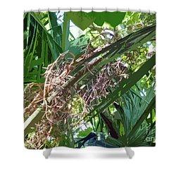 Shower Curtain featuring the digital art Shrub In Tree Art by Francesca Mackenney