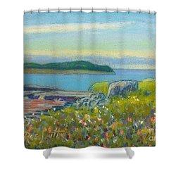 Shut In Island  Shower Curtain by Rae  Smith