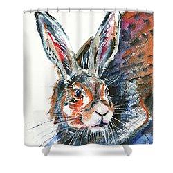 Shower Curtain featuring the painting Shy Hare by Zaira Dzhaubaeva