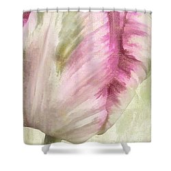 Shy II Shower Curtain by Mindy Sommers