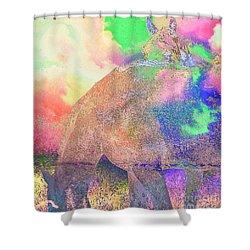Shy One Shower Curtain