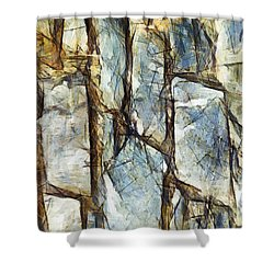 Shower Curtain featuring the painting Si Votre Sentiment Existe Vraiment by Sir Josef - Social Critic - ART