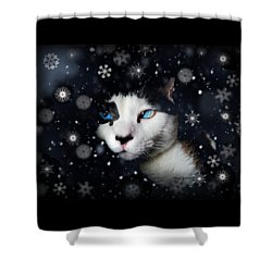 Siamese Cat Snowflakes Image   Shower Curtain