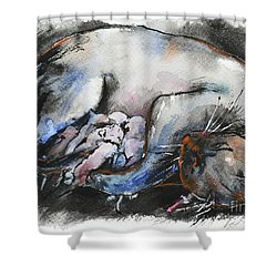 Shower Curtain featuring the painting Siamese Cat With Kittens by Zaira Dzhaubaeva