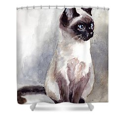 Siamese Kitten Portrait Shower Curtain