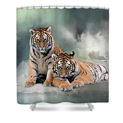 Siberian Twins Shower Curtain by Inge Riis McDonald