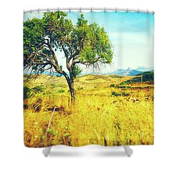 Shower Curtain featuring the photograph Sicilian Landscape With Tree by Silvia Ganora