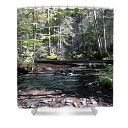 Side Brook Shower Curtain by John Selmer Sr