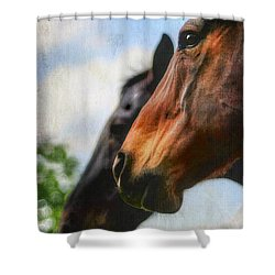 Side By Side Shower Curtain by Darren Fisher