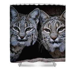 Shower Curtain featuring the photograph Side By Side by Elaine Malott