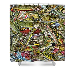 Side Fish Collage Shower Curtain