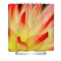 Side View Shower Curtain by Greg Nyquist
