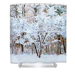 Siebold Viburnum In Snow Shower Curtain