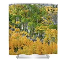 Sierra Autumn Colors Shower Curtain