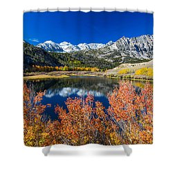 Sierra Foliage Shower Curtain