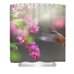 Sign Of Spring 2 Shower Curtain by Randy Hall