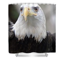 Sign Of Strength Shower Curtain