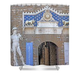 Signoria Square's David Shower Curtain by Allan Levin