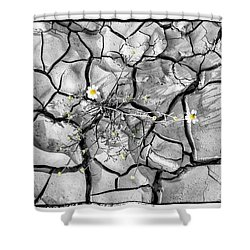Signs Of Life Shower Curtain by Arik Baltinester