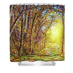 Silence Of A Forest Path Shower Curtain by Joel Bruce Wallach