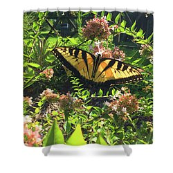 Silence Of Nature Shower Curtain