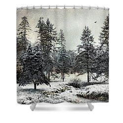 Shower Curtain featuring the photograph Silent Magic by Robin-Lee Vieira