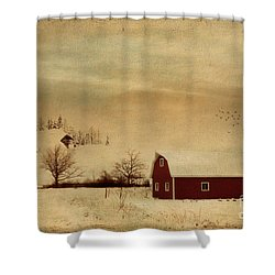 Shower Curtain featuring the photograph Silent Morning by Chris Armytage