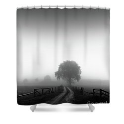 Silent Morning  Shower Curtain