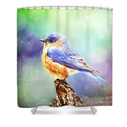 Silent Reverie Shower Curtain
