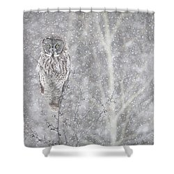 Shower Curtain featuring the photograph Silent Snowfall Landscape by Everet Regal